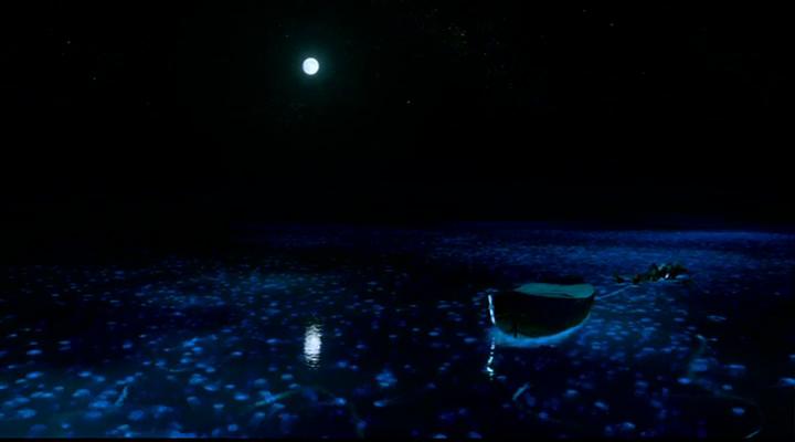 Night fishing experience at Maldives