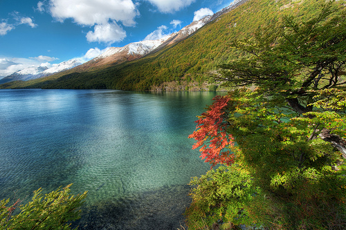 The Lake District  Patagonia  Argentina